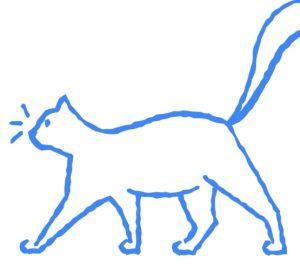 autodraw , cat