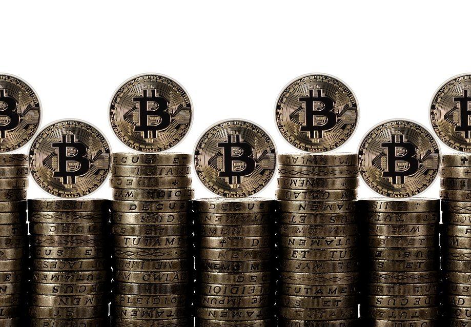 bitcoin-tulip