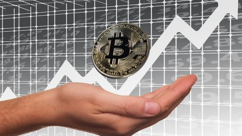 Bitcoin Stock Exchange Profit Rise