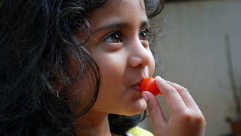 littlegirl-with-tomato